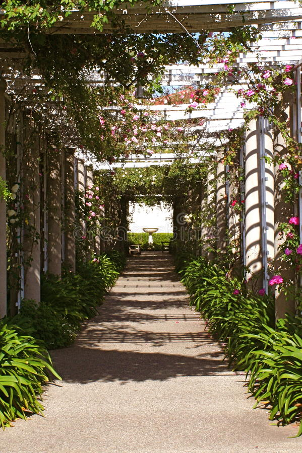 Huntington Library and Gardens Rose Covered Arbor stock image