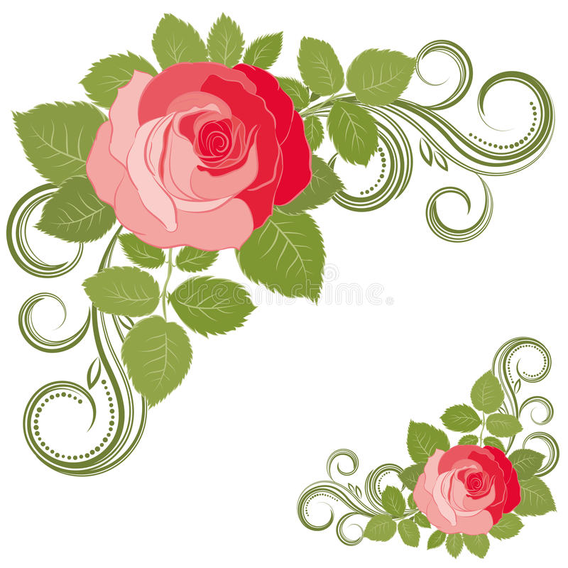 Download Rose And Curls. Stock Photos - Image: 14071293