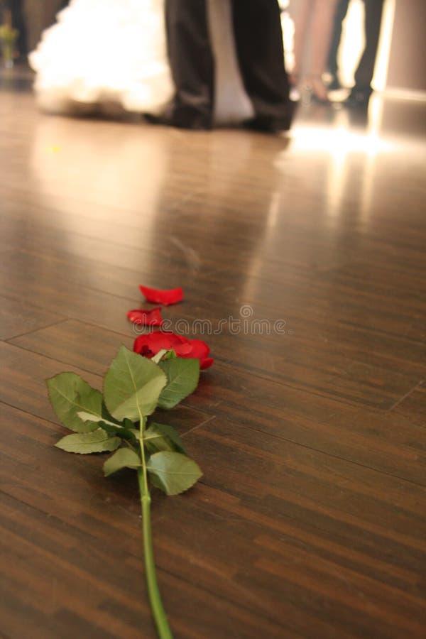 Rose on the dancefloor royalty free stock photos