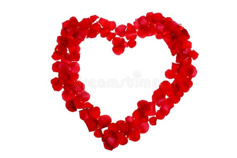 Rose dans une forme d'un coeur photo libre de droits