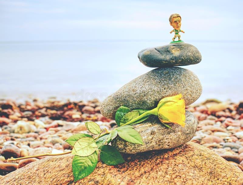 Rose de jaune sur la pile de pierres sur la plage Pile de cailloux photographie stock
