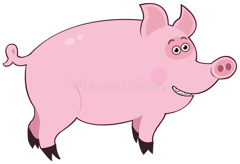 Rose de porc illustration stock
