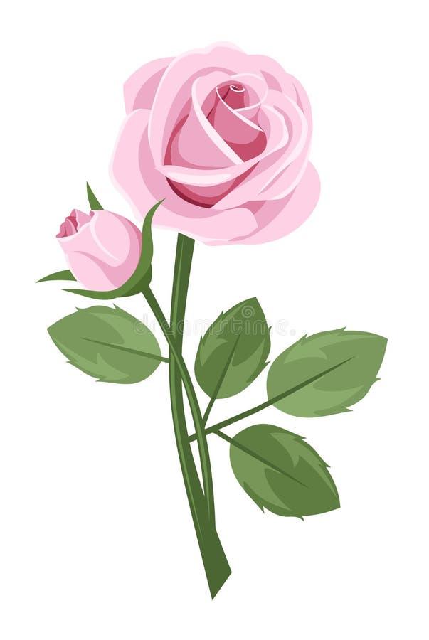 Rose de rose de cheminée d'isolement sur le blanc. illustration de vecteur
