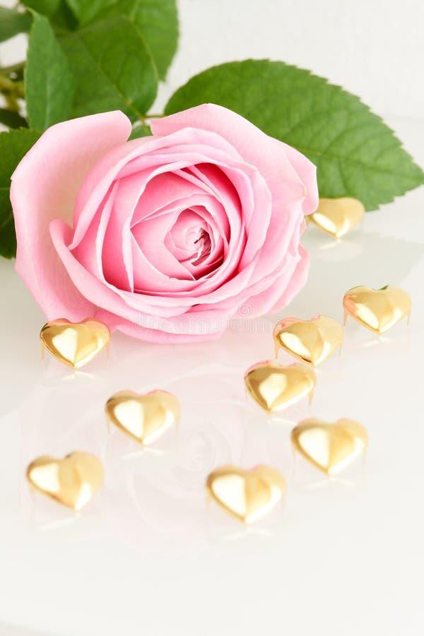 Rose de rose et coeurs d'or photo libre de droits
