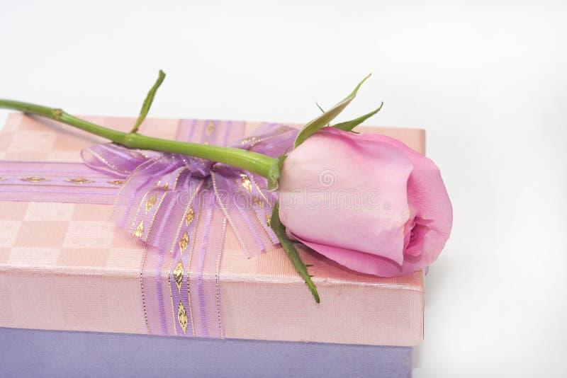 Rose de rose sur le boîte-cadeau rose avec l'arc image stock