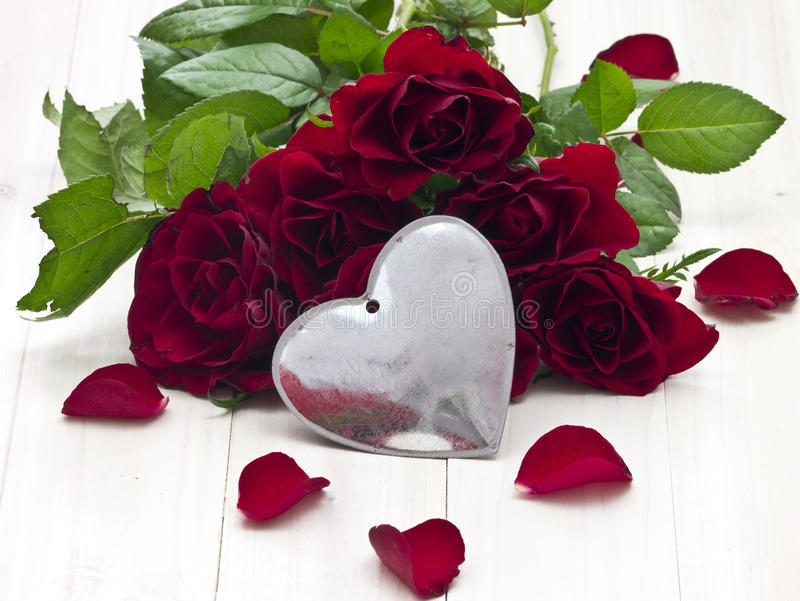 Rose de rouge image stock