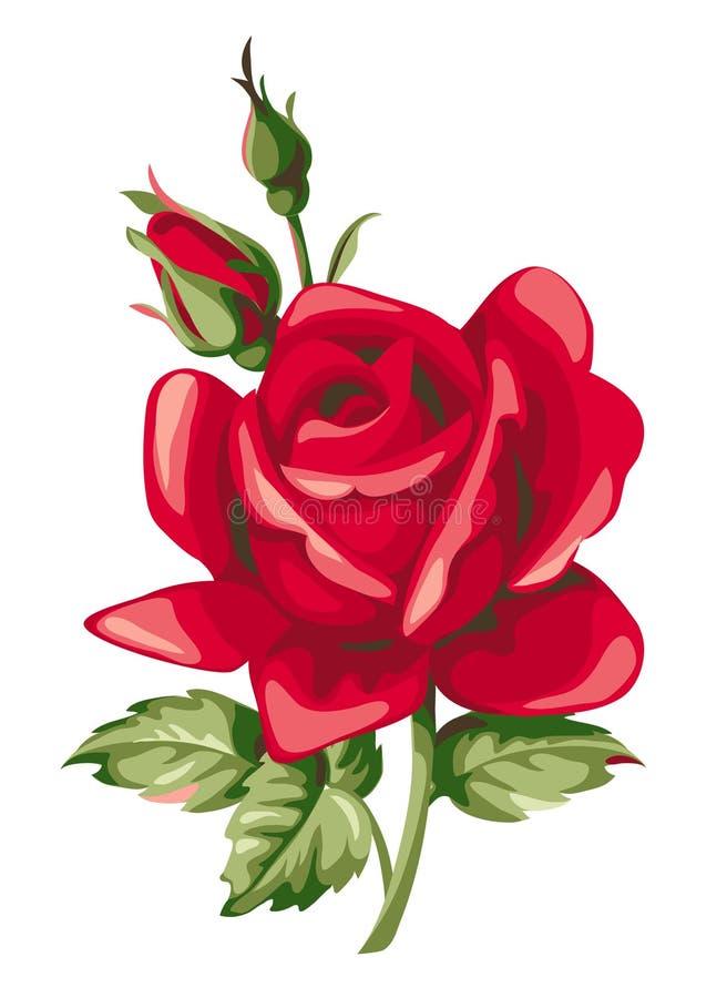 Rose de rouge de vecteur avec le bourgeon Fleurs décoratives de vintage illustration de vecteur