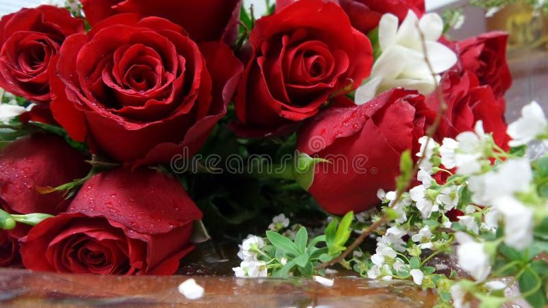 rose de rouge et petit bouquet de fleur blanche image. Black Bedroom Furniture Sets. Home Design Ideas
