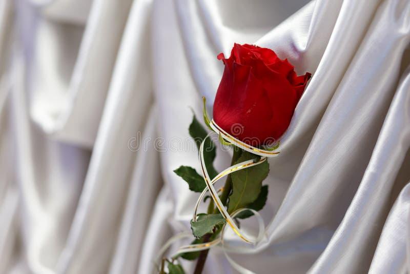 Rose de rouge sur la soie blanche photographie stock