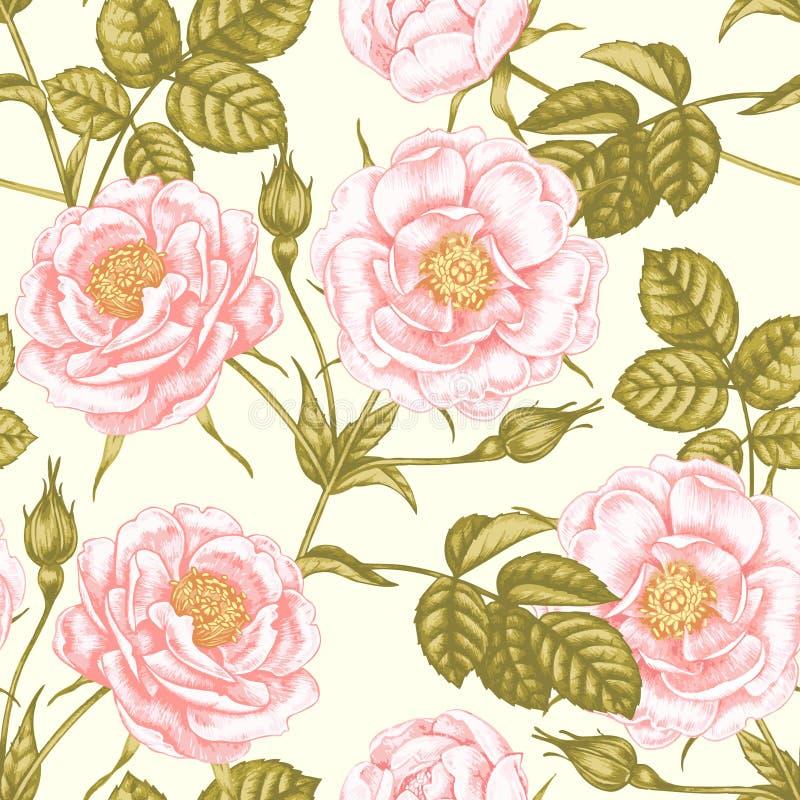 Rose del giardino Modello floreale senza cuciture nello stile vittoriano illustrazione vettoriale