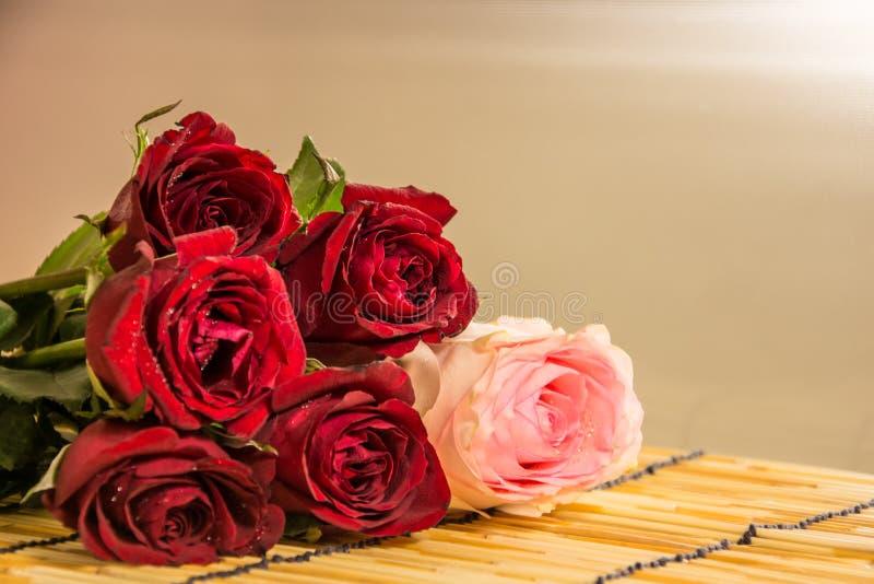 Rose 3 del primo piano immagine stock
