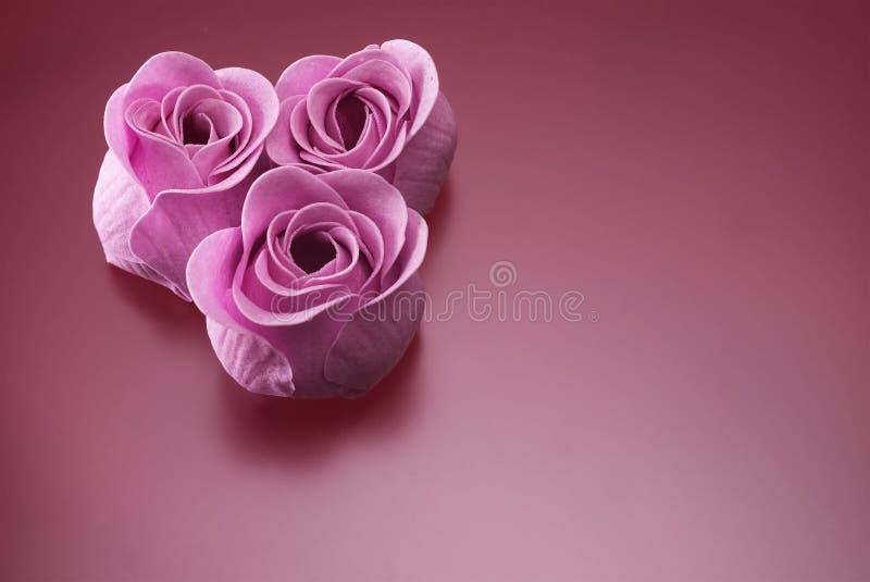 Rose del sapone su malva fotografia stock