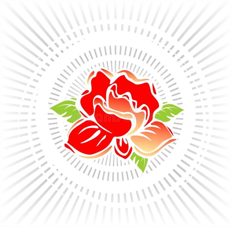 Rose in den Lichtstrahlen stock abbildung