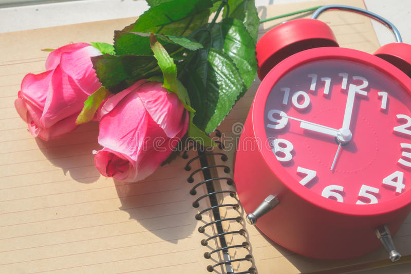 Rose, despertador foto de archivo libre de regalías