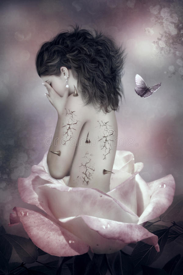 rose dziczy ilustracji