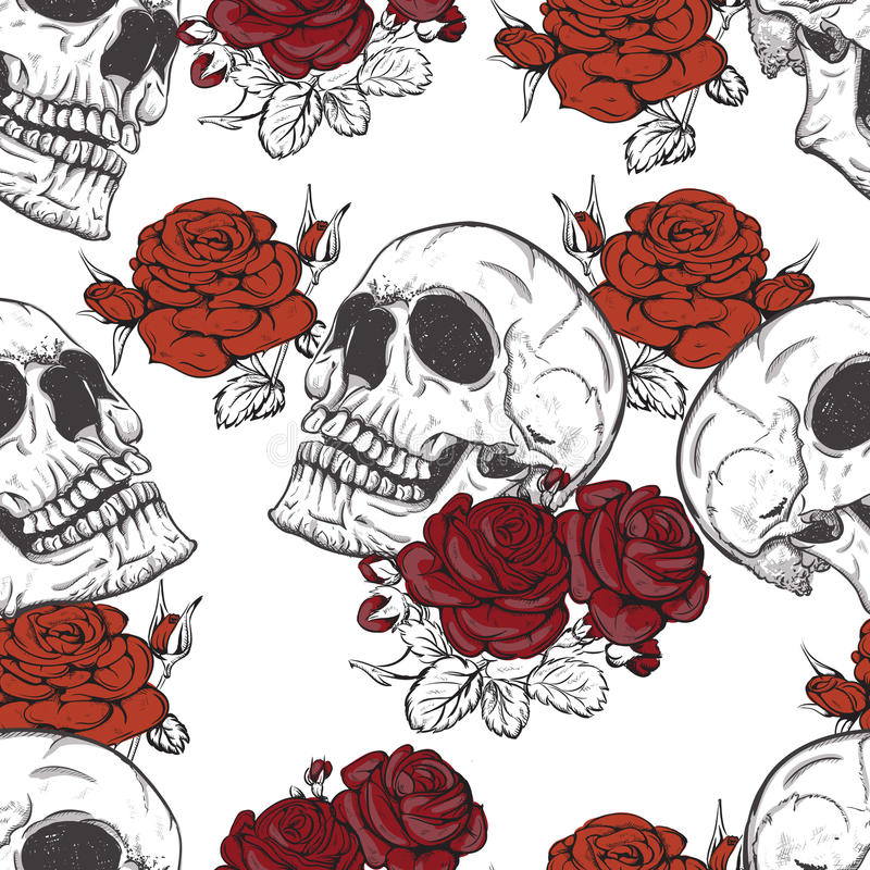 Rose e crani royalty illustrazione gratis