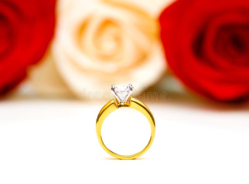 Rose ed anello di cerimonia nuziale isolato immagine stock libera da diritti