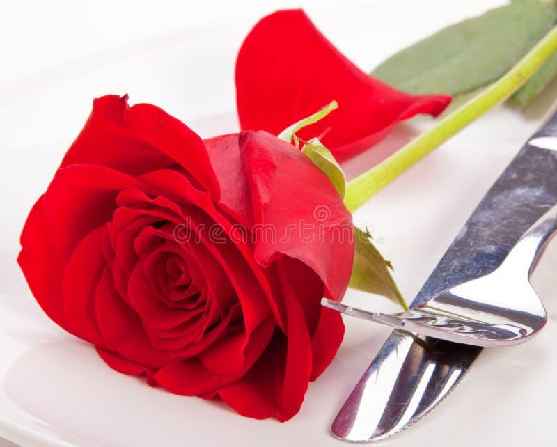 Rose In Einer Platte Lizenzfreies Stockfoto
