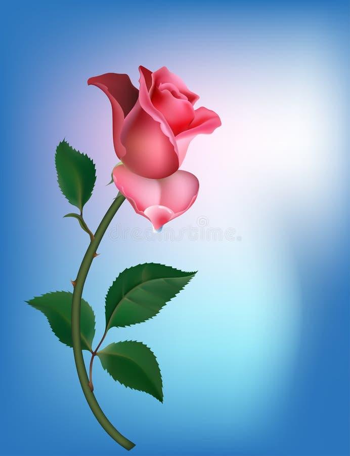 Rose en azul ilustración del vector
