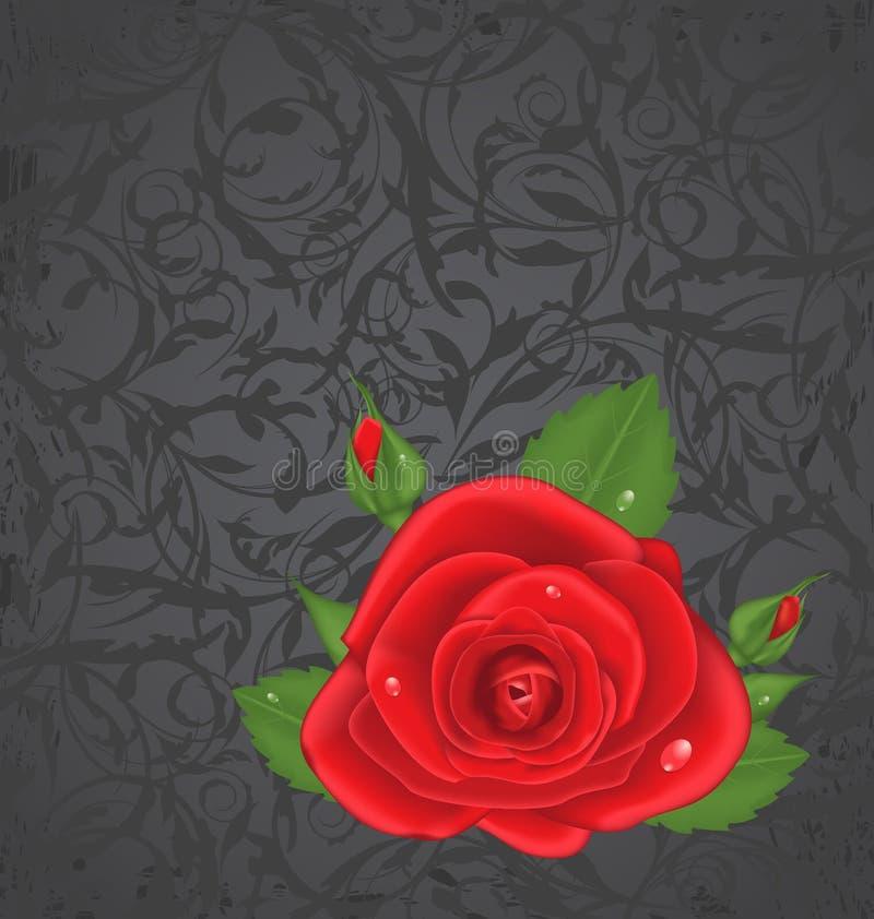 Rose en gros plan de rouge sur le fond floral grunge illustration stock