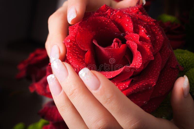 Rose en manos foto de archivo
