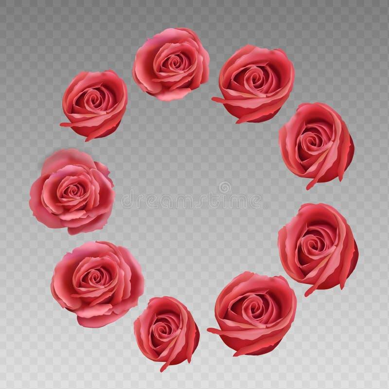 Rose en un fondo transparente Rose Vector Illustration El rojo se levantó La flor se levantó stock de ilustración