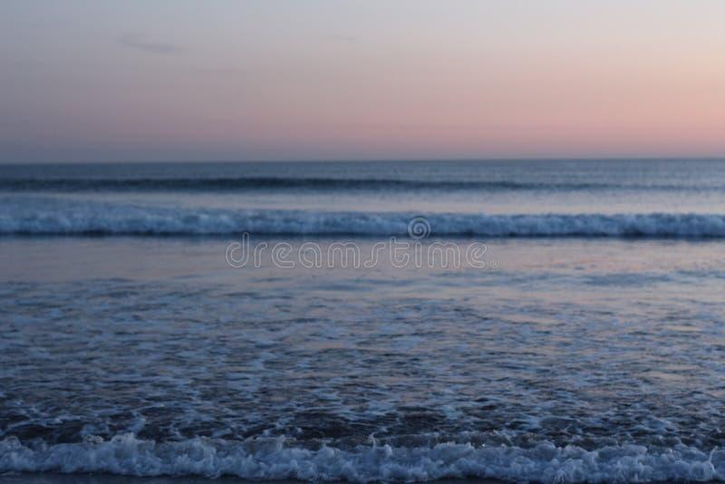 Rose et coucher du soleil bleu images libres de droits