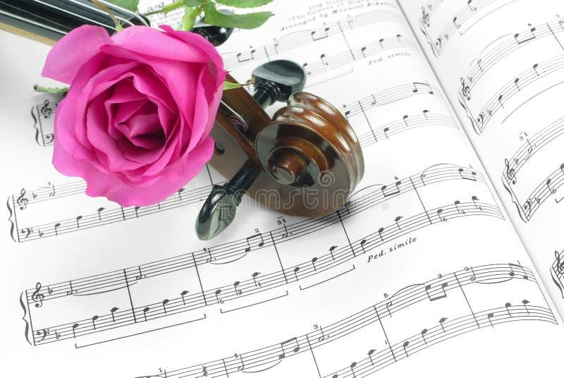 Rose et violon photos stock