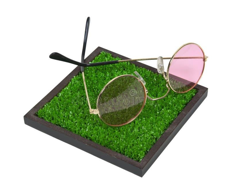 Rose färbte Gläser auf dem Gras stockbilder
