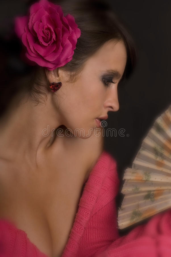 Rose & Fan 5 royalty free stock photos