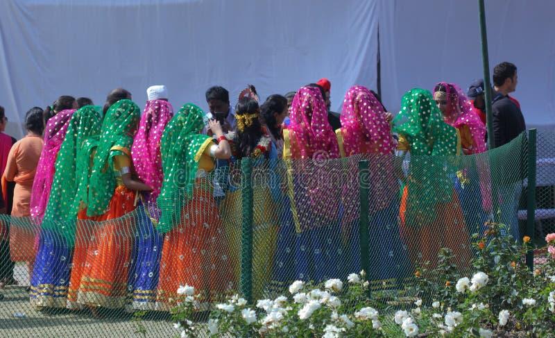 Rose Festival, kulturelle Show, Chandigarh, Indien stockbild