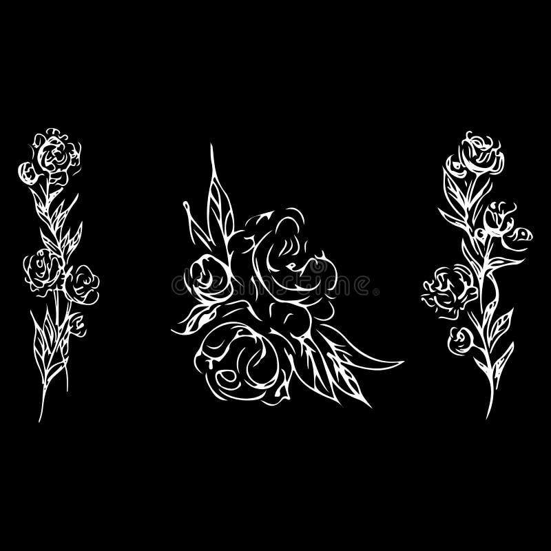 Rose fijó el esquema El vector dibujado mano del vintage aisl? el sistema Ejemplo floral del vector Gr?fico, dibujo de bosquejo G ilustración del vector