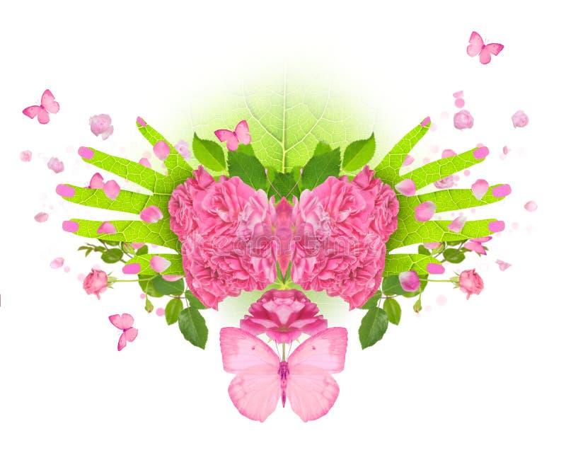 Rose fjärilshänder fotografering för bildbyråer