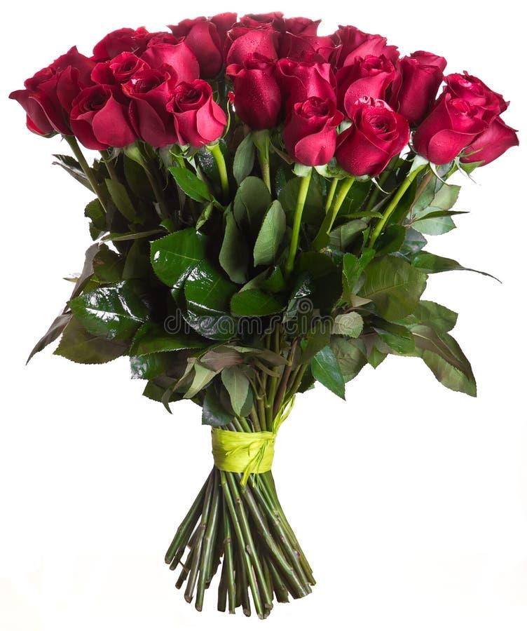Rose fleurit le bouquet d'isolement photographie stock