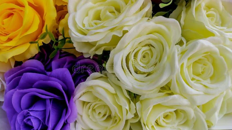 Rose - flor, flor, primavera, ramo, centro de flores fotografía de archivo libre de regalías