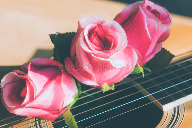 Rose florece la guitarra imagen de archivo