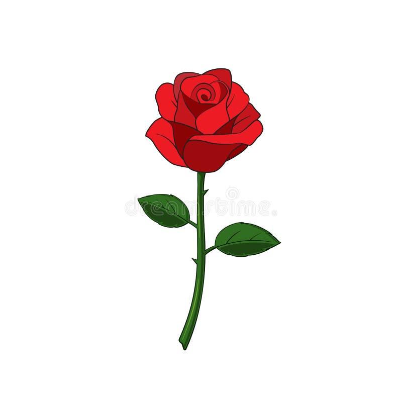 Rose Flower stock de ilustración