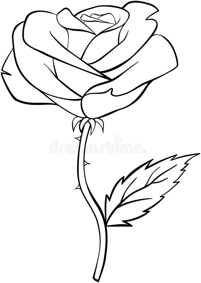 Rose flower black outline on a white background stock vector download rose flower black outline on a white background stock vector illustration of decoration mightylinksfo