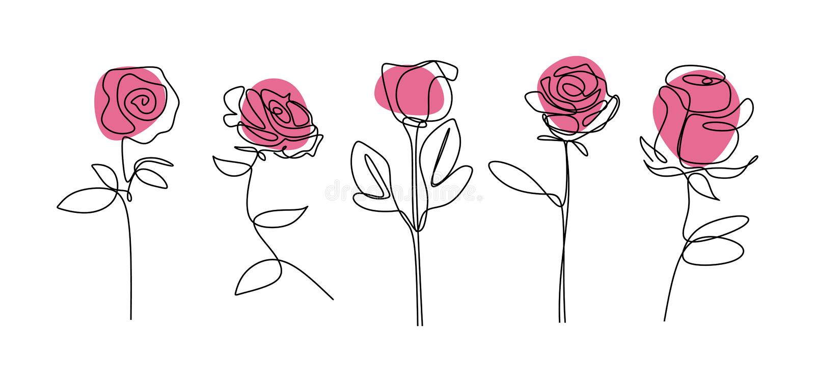 Rose flower continuous line drawing Minimalism floral botanical garden vector illustration. Single hand drawn set element royalty free illustration