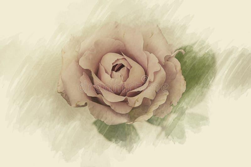 Flower design black Vintage beautiful flowers made with color f. Rose flower design on black Vintage beautiful flowers made with color filters stock illustration