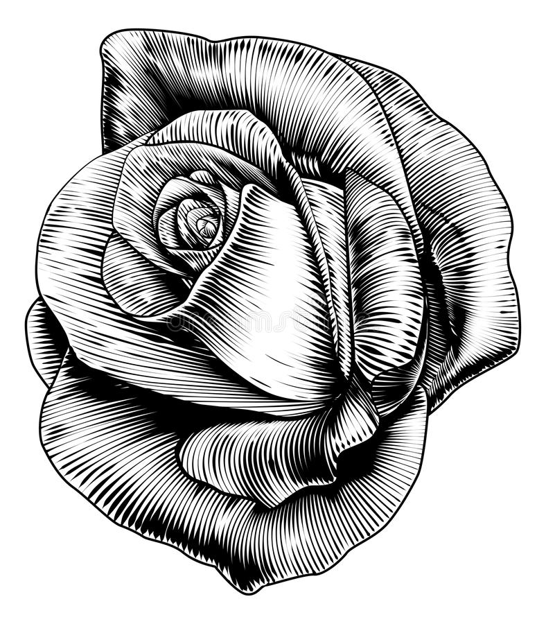 Rose Flower in Engraved Etching Woodcut Style. A single rose flower in a vintage retro engraved etching woodcut style stock illustration