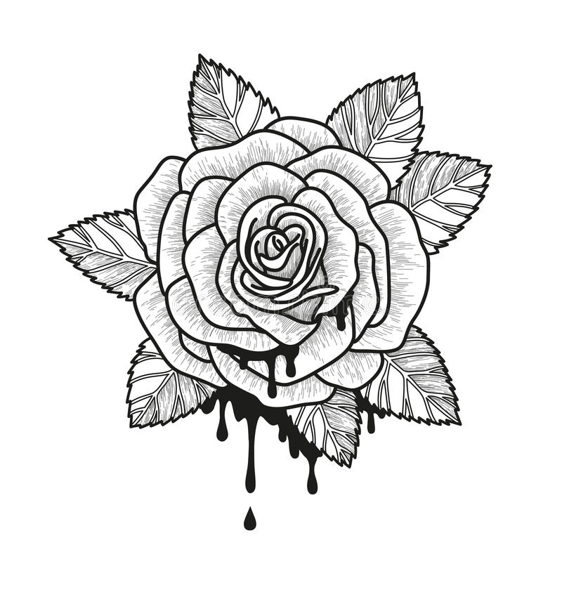 Rose flower monochrome vector illustration. Beautiful rose isolated on white background. Element for design of tattoo royalty free illustration