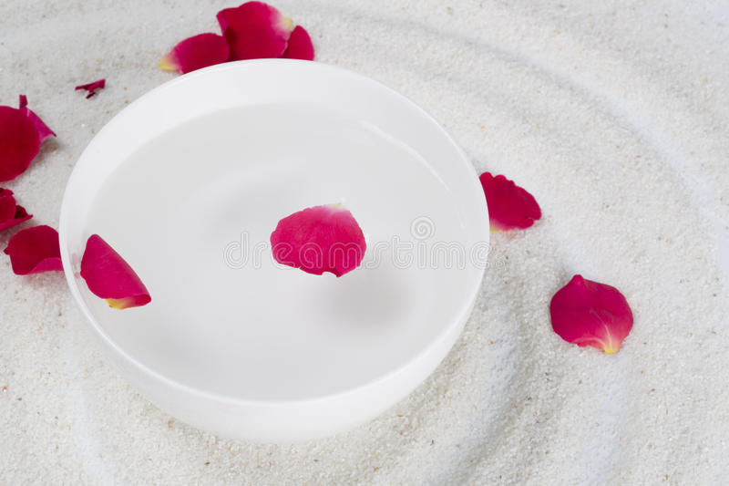 Rose flower petals royalty free stock photos