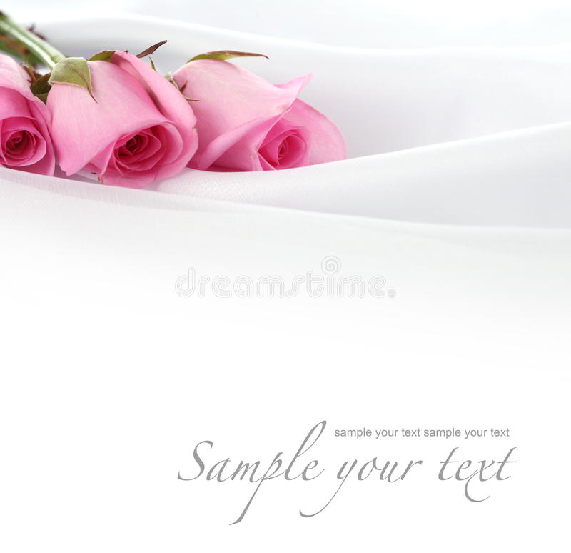 Download Rose flower on silk stock image. Image of pink, copy - 16857927