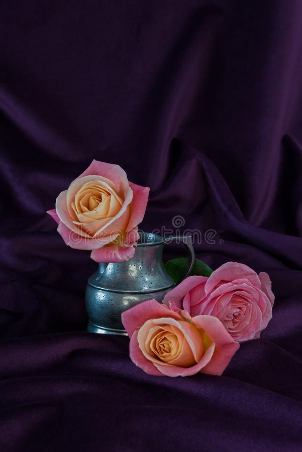 Rose flower in silver jug and two delicate rose flowers stock photography