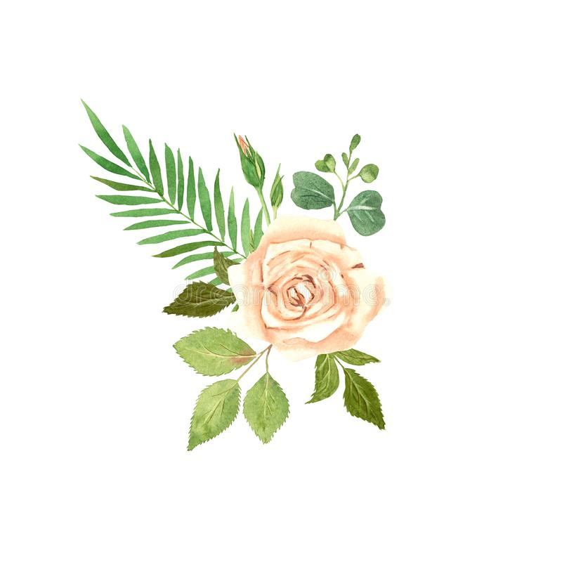 Rose Flower Watercolor Composition immagine stock