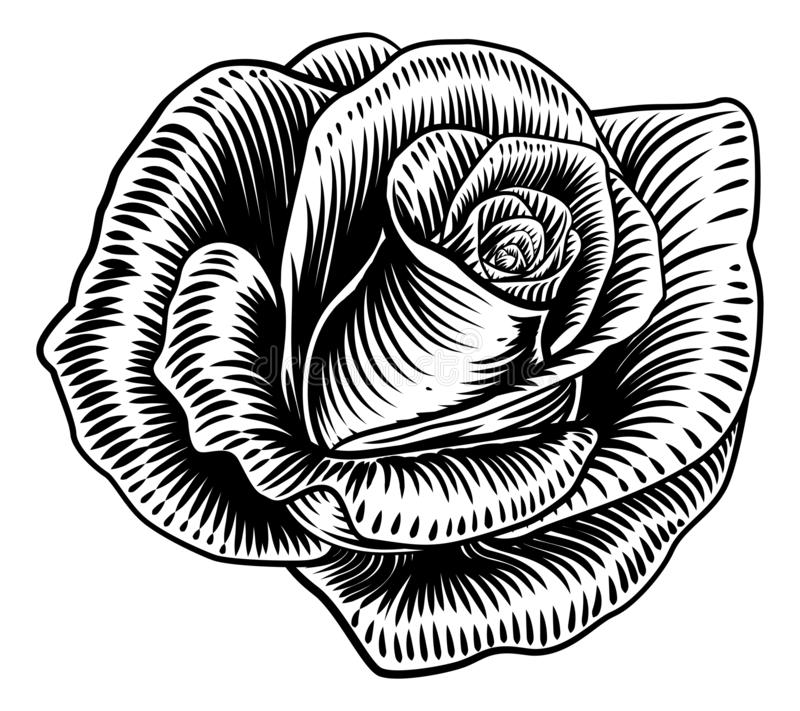 Rose Flower Woodcut Etching Style illustrazione vettoriale