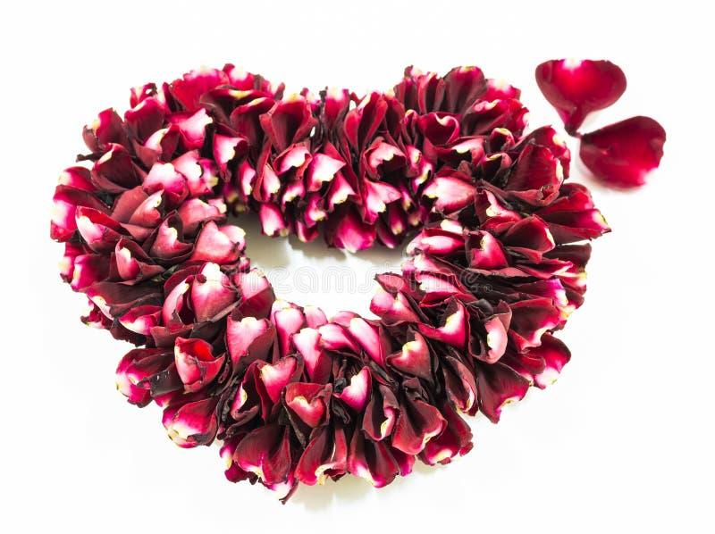 Rose Flowers Heart Over White stock image