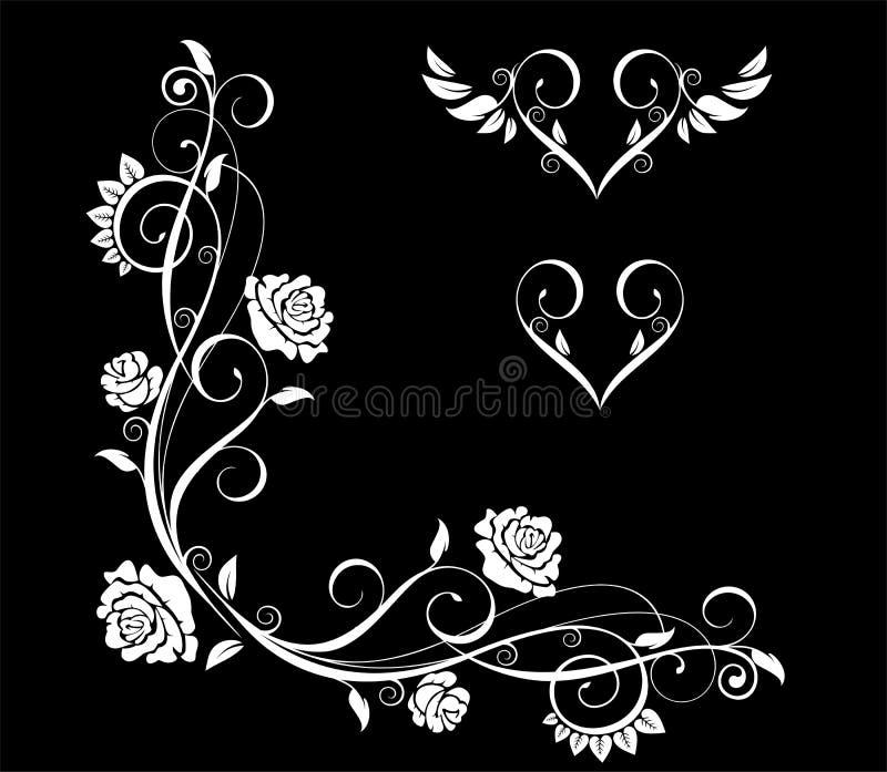 Rose flowers vector illustration