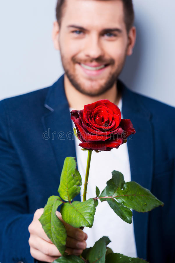Free Rose For You. Stock Photography - 49101802